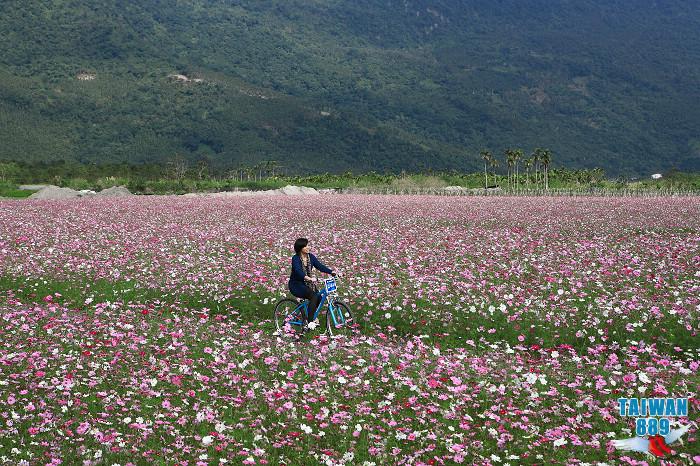 壽豐環鄉自行車步道